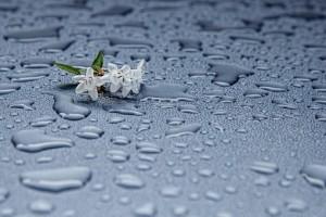 rain_drops_